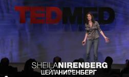 Шейла Ниренберг — Глазной протез для лечения слепоты