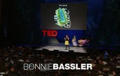 Бонни Басслер — Как общаются бактерии