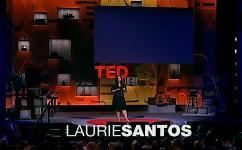 Лори Сантос — Люди так же иррациональны в экономике, как и обезьяны